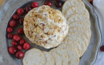 Cranberry Gorgonzola walnut cheese ball by Nutra Ease