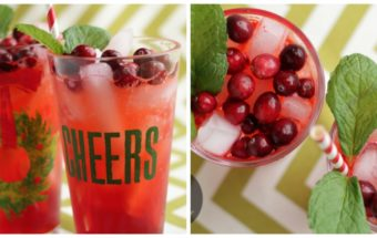 Cranberry Mint Punch by Nutra Ease